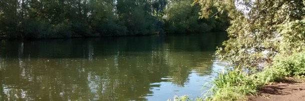 A view of a fishing spot on the Thames in Middx, on a sunny autumn afternoon.