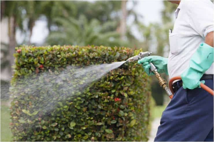 Residential Pest Control Services in Sevierville TN