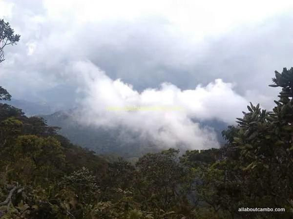 облака на борнео