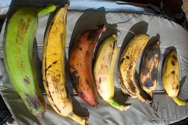 разные бананы в камбодже