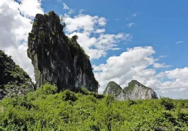 плантации в Камбодже