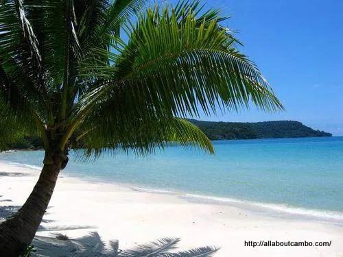 пляж кох танг