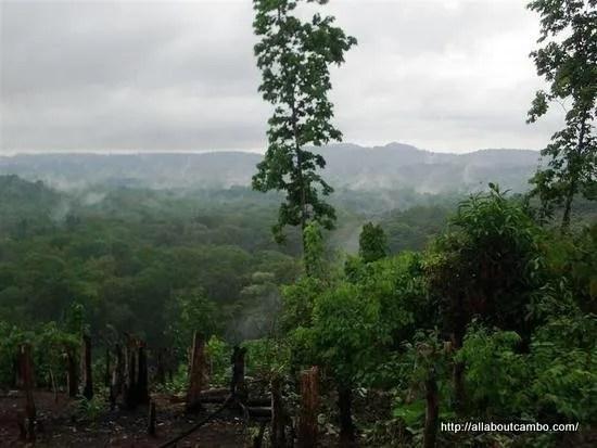08-джунгли-в-камбодже