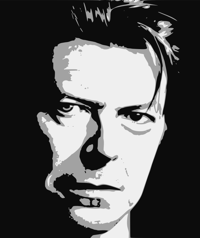 bowie-1152551_1280