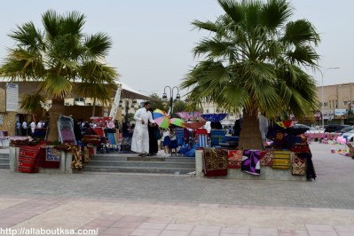 Riyadh Zoo - Outside Zoo
