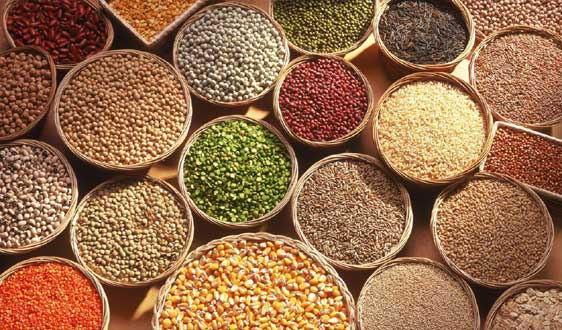 Homemade Millet Recipes – Nutritious and Healthy food for babies