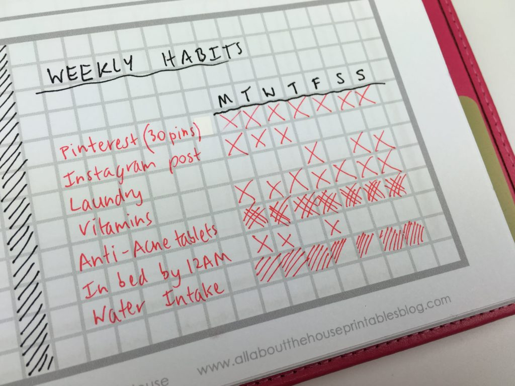 Weekly Planning Using Only A Checklist And Habit Tracker