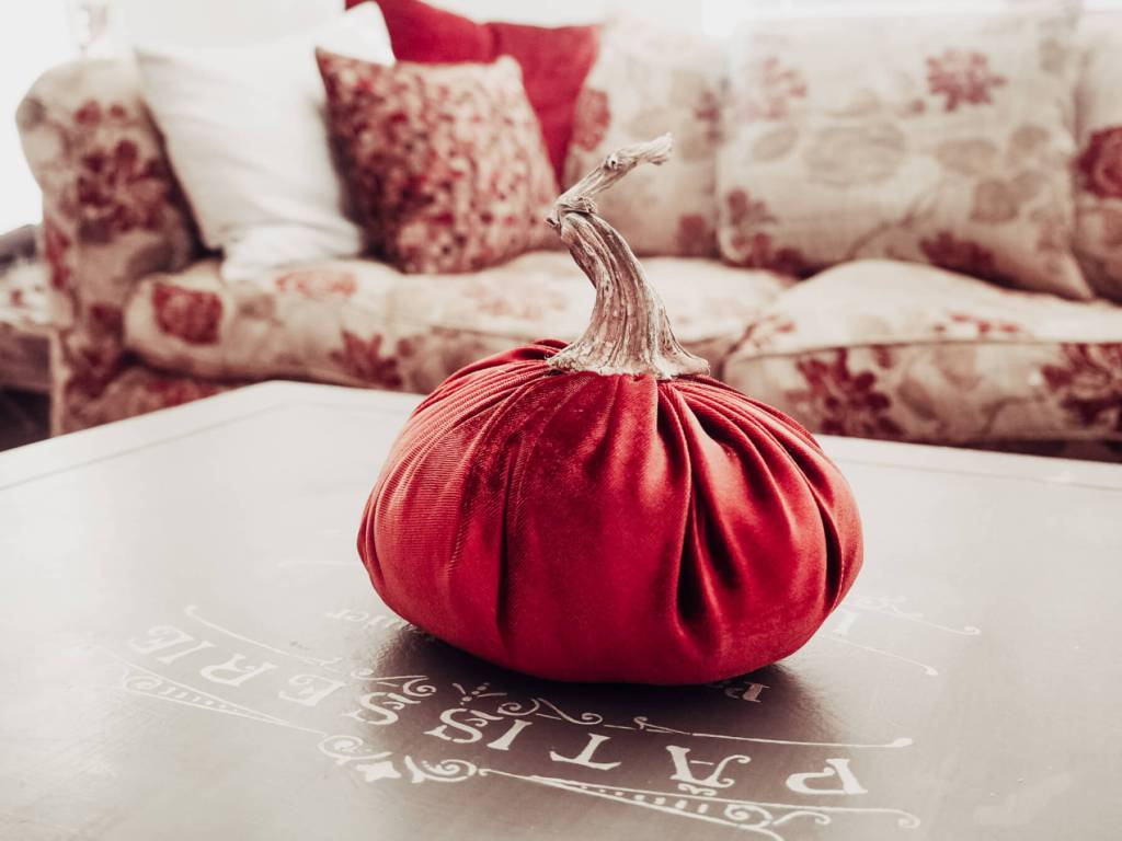 Velvet Pumpkins to decorate your home for fall.