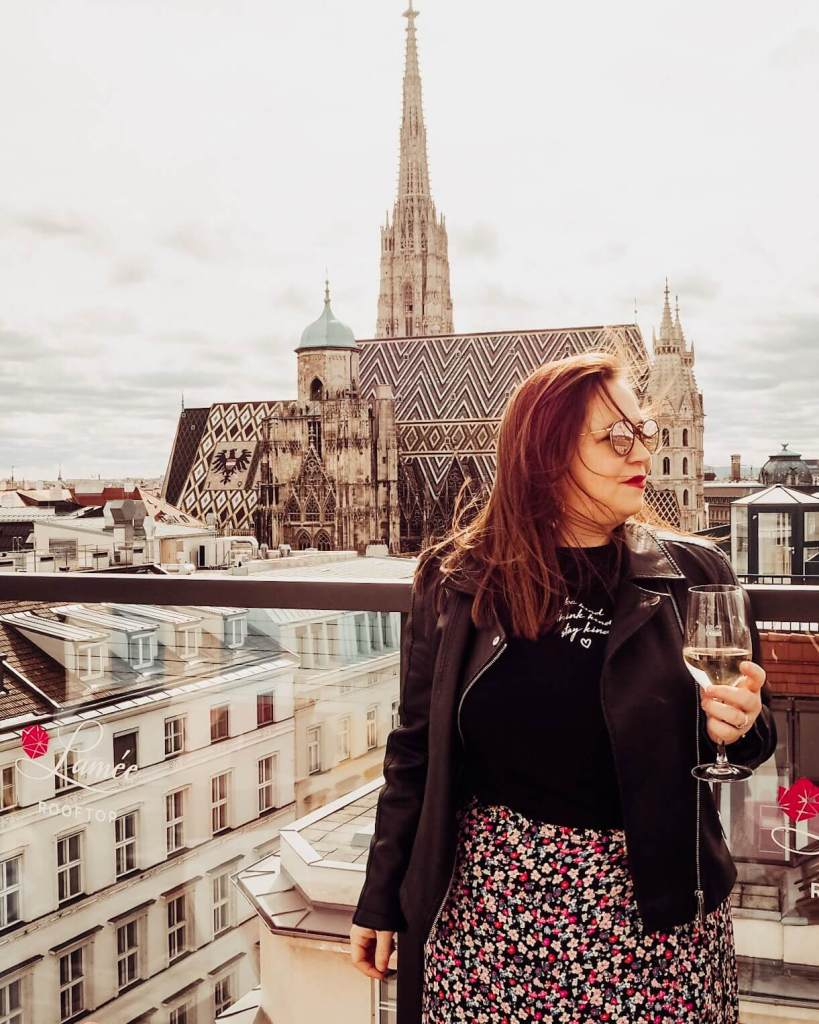 Rooftop views of Vienna