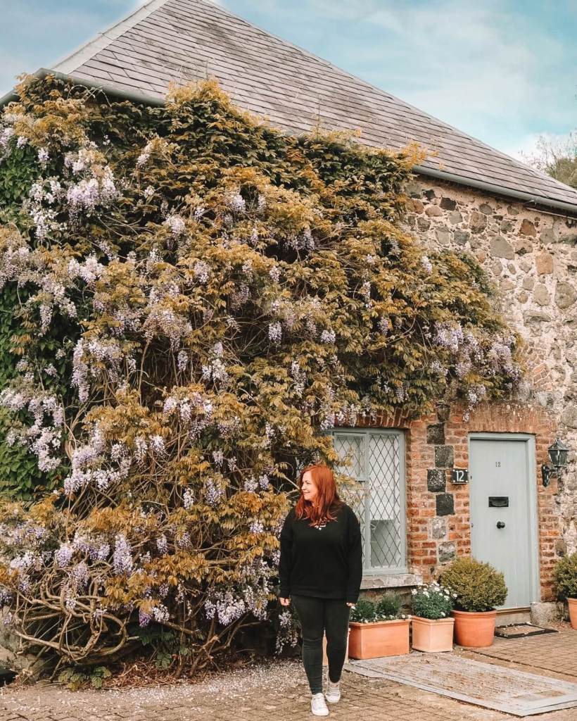 Country house covered in wisteria