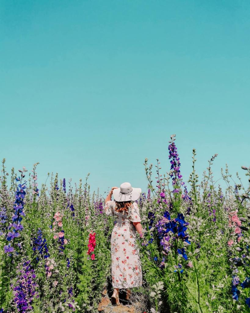 Woman in a floral dress and straw hat standing in a field of flowers in The Cotswolds
