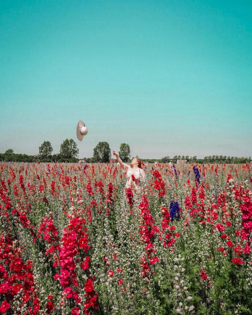 Woman standing in a field of flowers throwing her straw hat into the air