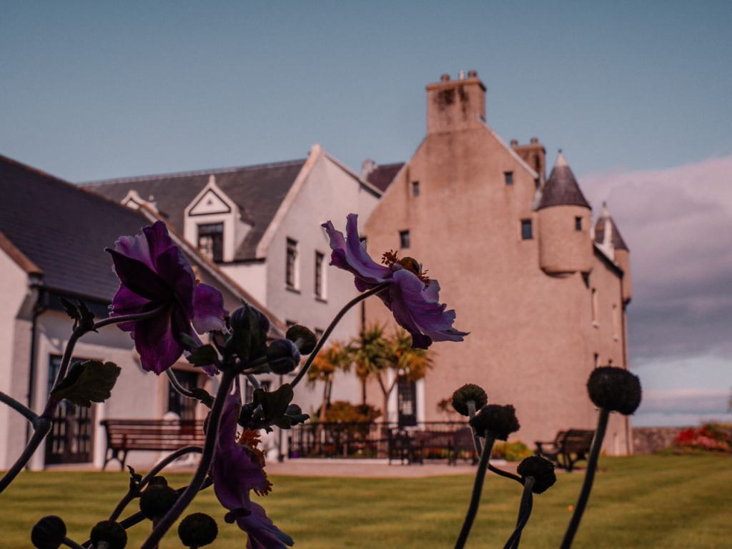 Exterior of Ballygally castle hotel framed by flowers