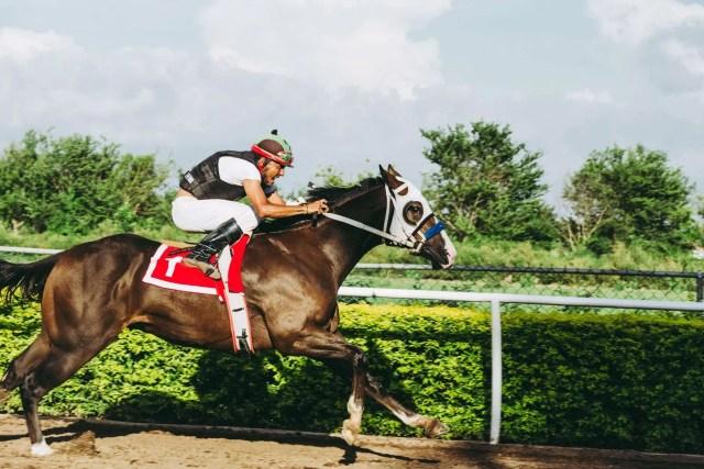 Expert Betting Advice And Analysis
