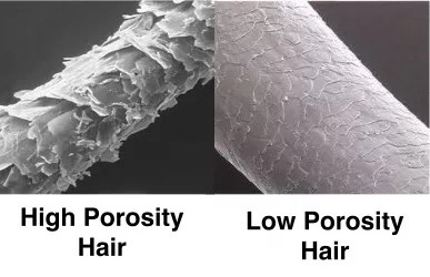 low porosity hair vs high porosity hair