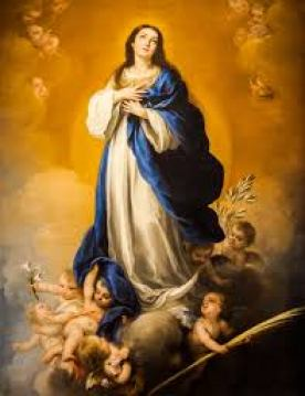 immaculation-conception