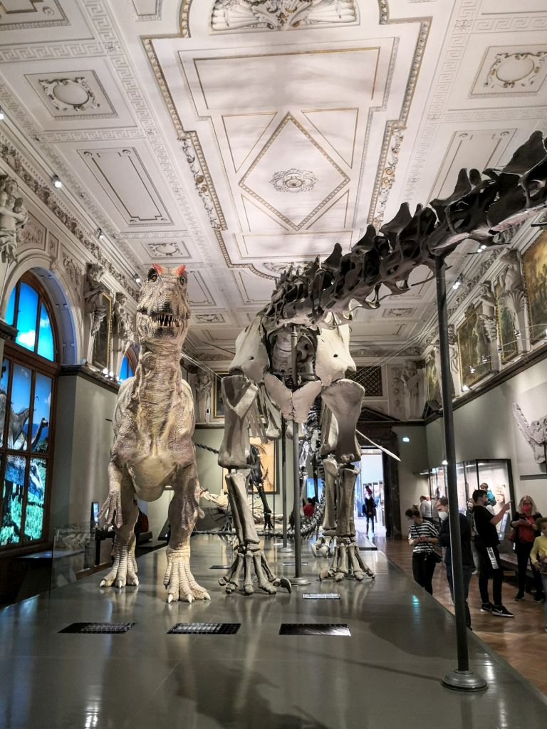 Dinosaurs collection - Natural History Museum Vienna