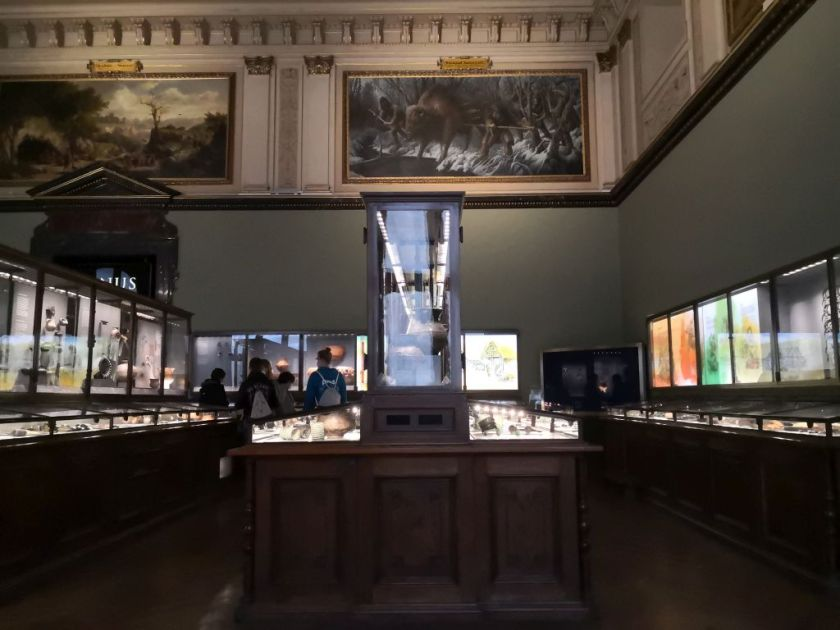 One of the galleries - Natural History Museum Vienna