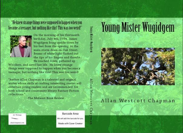 YOUNG MISTER WUGIDGEM BOOK COVER
