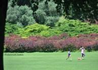 Parco Sigurtà 19