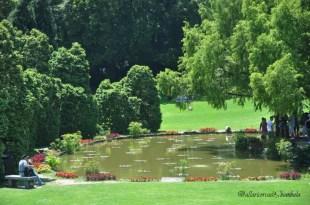 Parco Sigurtà 5