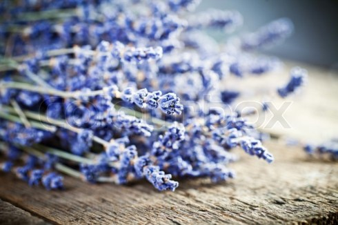 11412435-bunch-of-lavender-flowers-on-an-old-wood-table