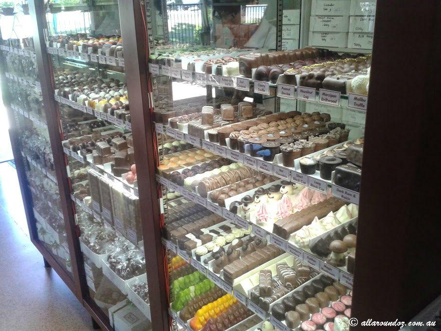 Chocolate Gallery Tambourine Mountain