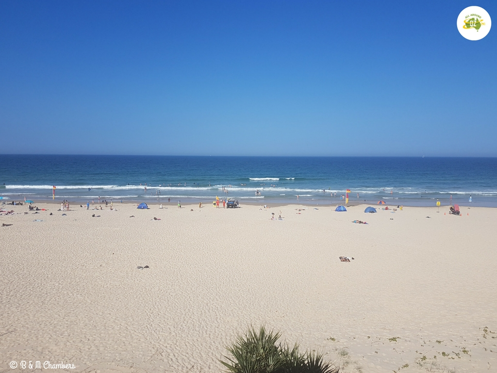 Things to do on the Sunshine Coast - Visit a Surf Club
