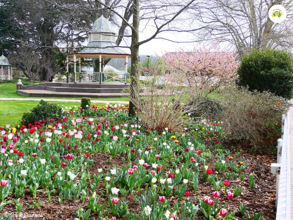 Exploring the Southern Highlands - Corbett Gardens, Bowral