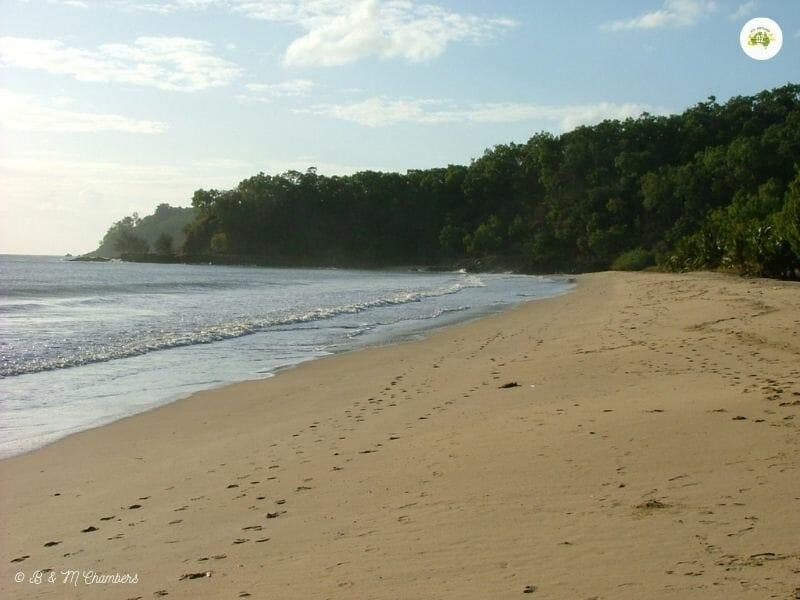Ellis Beach, Cairns