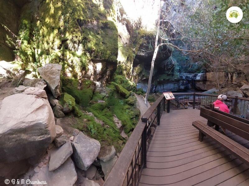 Carnarvon Gorge Moss Garden