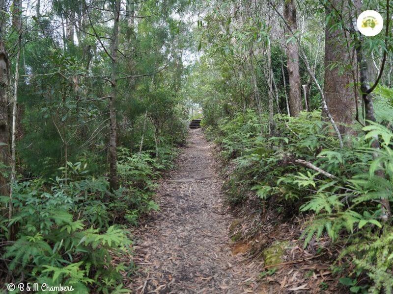 7 Tips for Bush Walking Safety