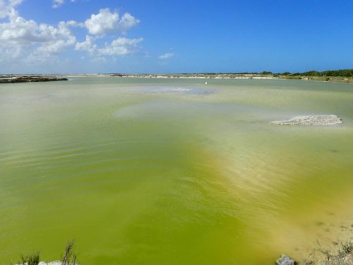 ラスコロラダスの緑色の湖