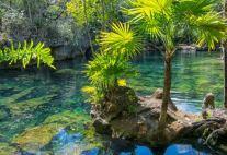 外から見たセノーテの泉