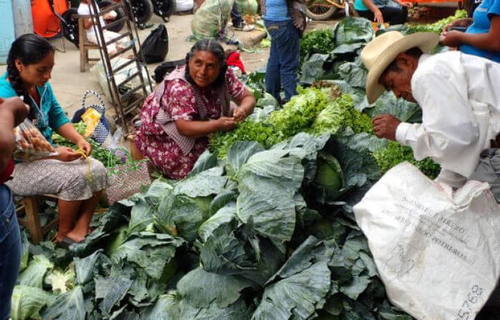 オアハカの市場でキャベツを売るおばちゃん