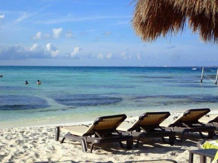 美しいビーチと、ヤシの木とビーチベッド