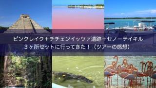 ピンクレイク&チチェンイッツァ遺跡+セノーテイキルのツアー