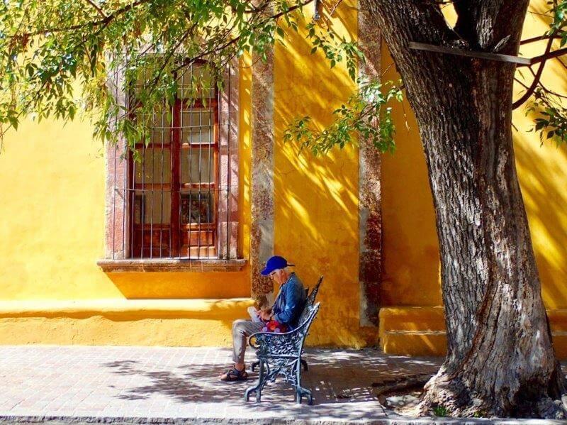 サンミゲルデアジェンデの道端の風景2