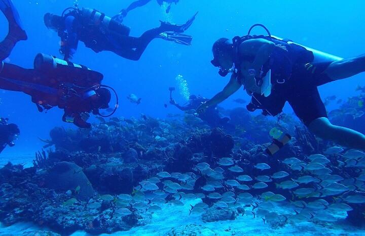 コスメル島ダイビング4
