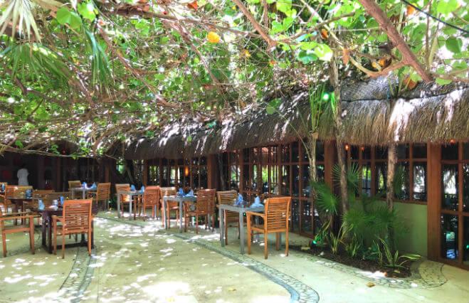 ライブアクアビーチリゾートカンクンのレストラン