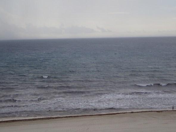 海藻まみれのカンクンのビーチ12