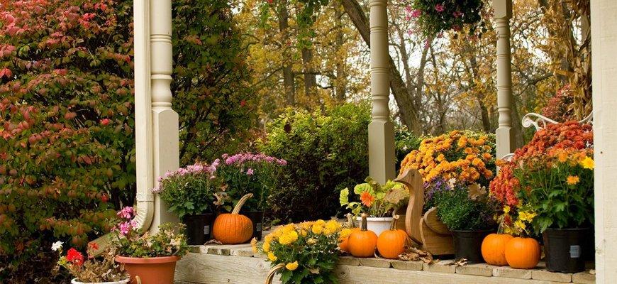 Украшение осеннего сада