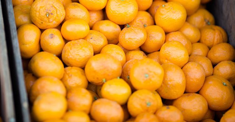 mandarin orange vs clementine