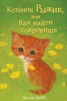 Котенок Рыжик, или Как найти сокровище