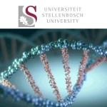 MSc Bursary Department of Genetics - Stellenbosch University