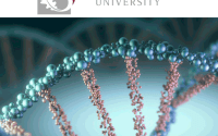 MSc Bursary Department of Genetics - Stellenbosch University