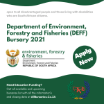 Department of Environment, Forestry and Fisheries (DEFF) Bursary