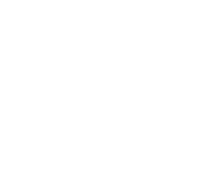 All city scaffolding_logo_white only