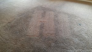 Carpet Cleaning real bad areas before and after  results
