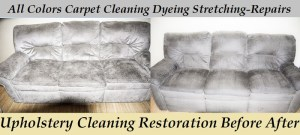 sofa Clean before after